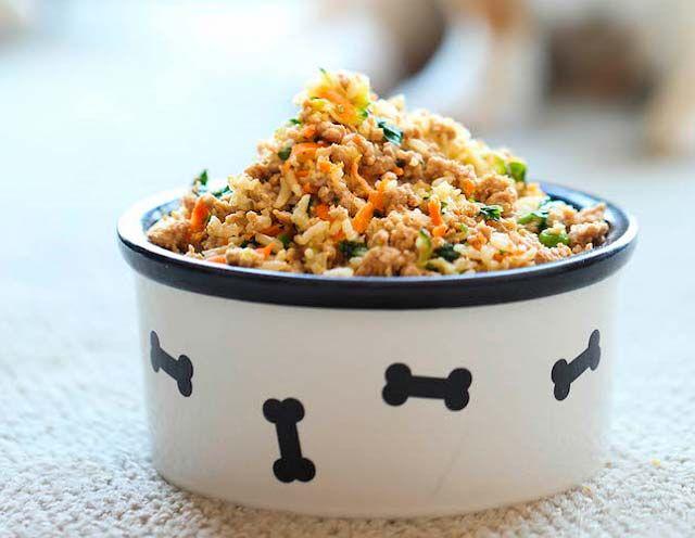 Es recomendable dar comida casera a un cachorro