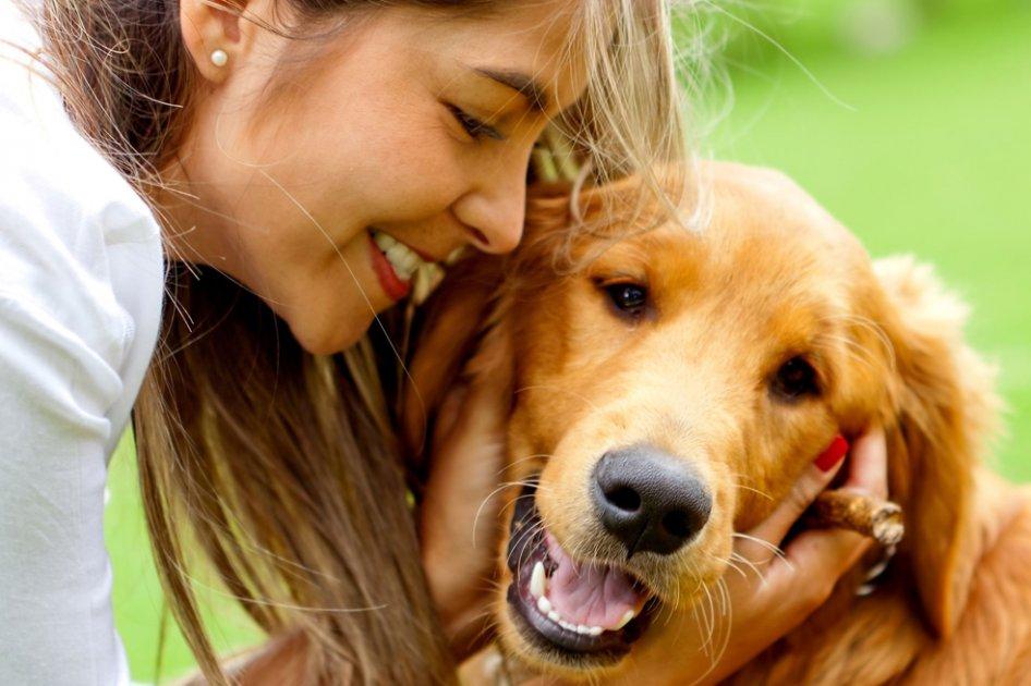 Las ventajas de tener un perro grande